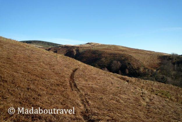 Ochill Hills en el Dollar Glen