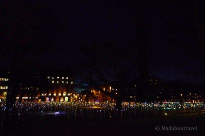 La instalación Field of Light de Bruce Munro en St. Andrews Square de Edimburgo