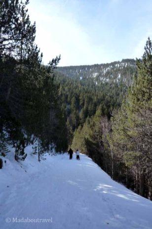 Ruta con raquetas de nieve en Espot