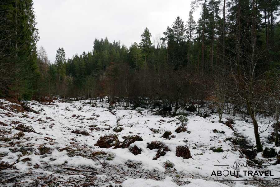 Nieve en el Hermitage de Dunkeld