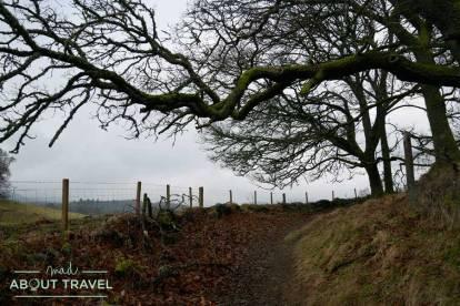 De camino al Loch of the Lowes