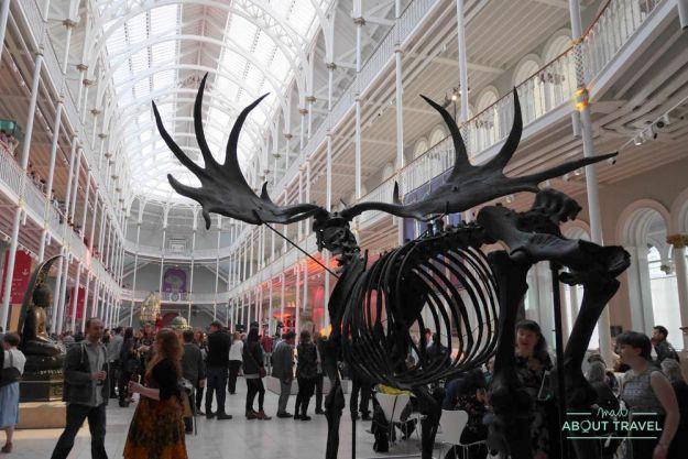 Noche en el Museo Nacional de Escocia en Edimburgo