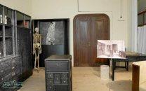 Colección permanente del Museo Leopold de Viena