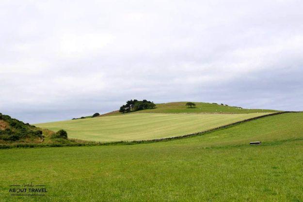 reserva natural de st abbs en los borders de escocia