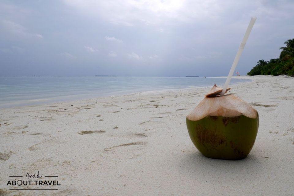 coco en la playa en el resort angsana velavaru en maldivas