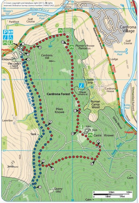 ruta senderista por el bosque de cardrona