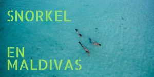 ESNORKEL EN MALDIVAS