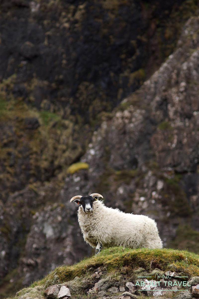 Quiraing, isla de Escocia