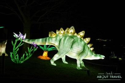 giant-lanterns-edinburgh-zoo-19
