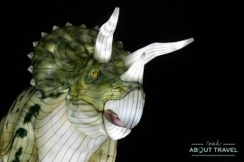 giant-lanterns-edinburgh-zoo-35