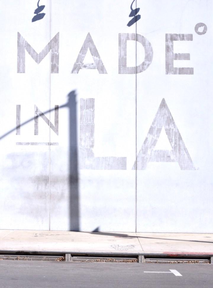L.A. City Tour