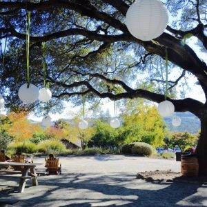 Matanzas Creek Winery(マタンザス・クリーク・ワイナリー)