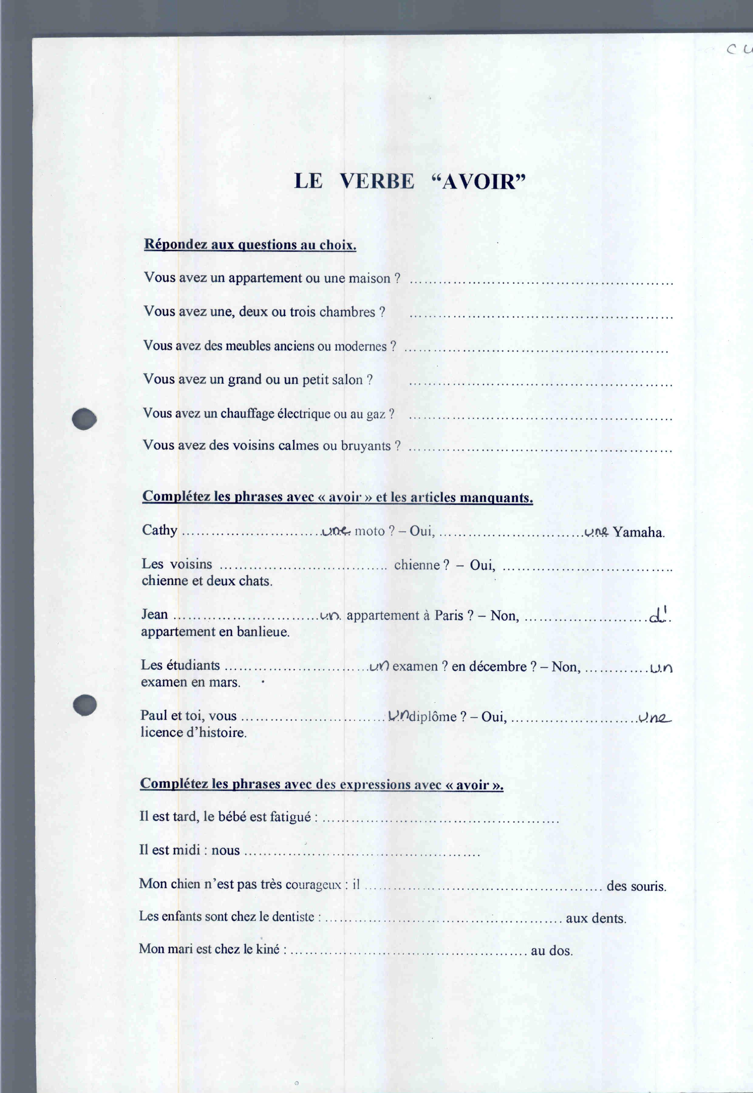 Expression Avoir Worksheet