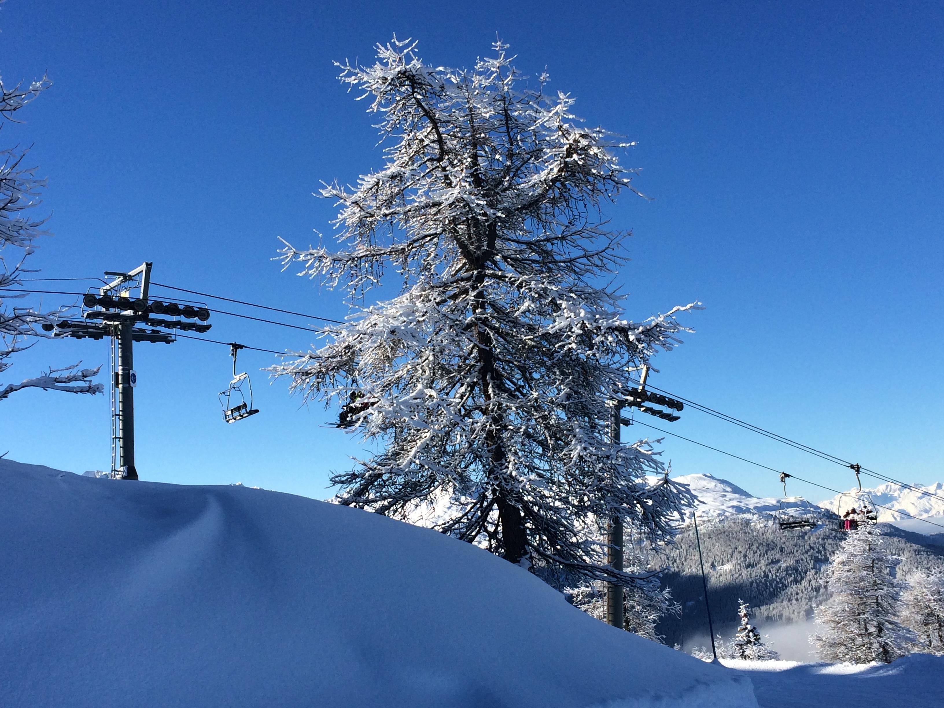 station de ski la plagne madame voyage