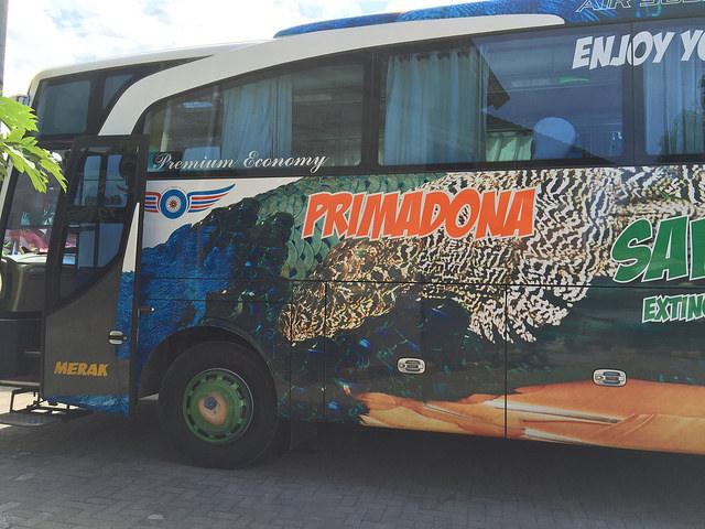 Bus Makassar - Toraja