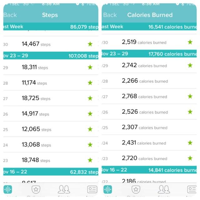 Informasi Goal per hari berdasarkan langkah dan kalori