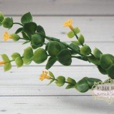 Ирландская травка с цветами