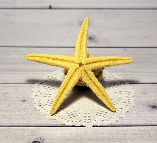 Звезда Сахарная