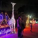 安佐動物公園納涼ナイトサファリー2020開催!アクセス・駐車場・料金案内!