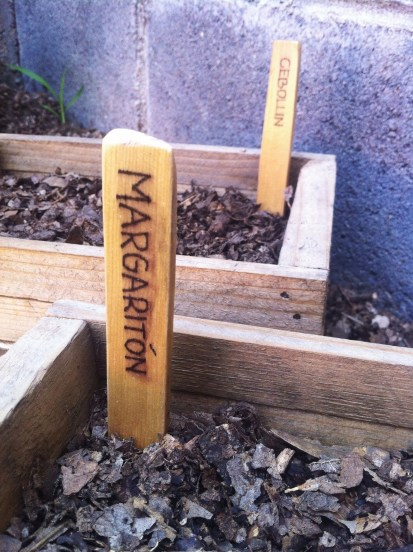 I used also some wood leftovers for marking the territory of plants I have in wooden boxes