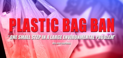 California first state to ban plastic bags