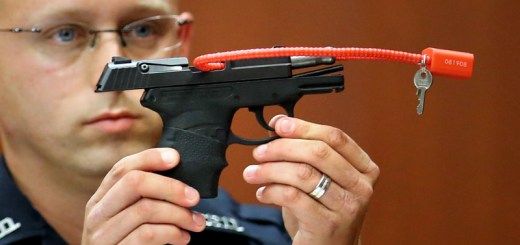 George Zimmerman to Auction Off Gun