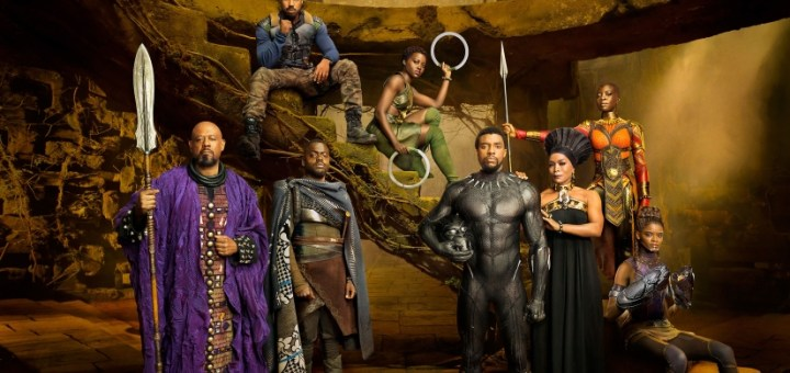 The Black Panther Movie Divide