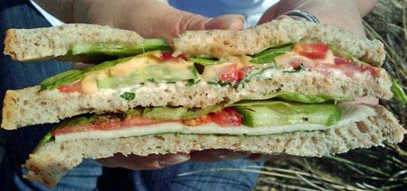 mad-sandwich