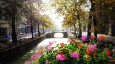 Delft Mist 30