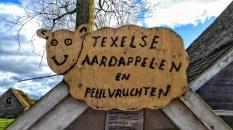 Texel 1038