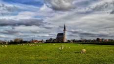 Texel 2016 (17)