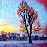 4 foto bewerkt met prisma (16)