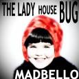 The Lady House Bug 1500 A