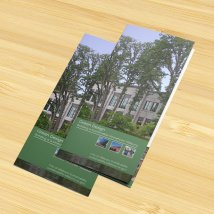 Green Buildings brochure