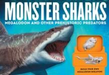 Monster Sharks Cover