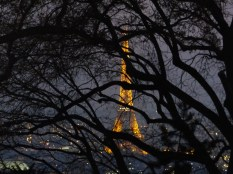 The Eiffel Tower from Sacre Coeur