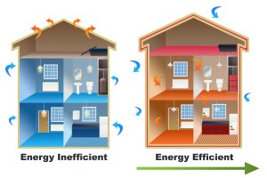 Mad City Environmental Energy Homes
