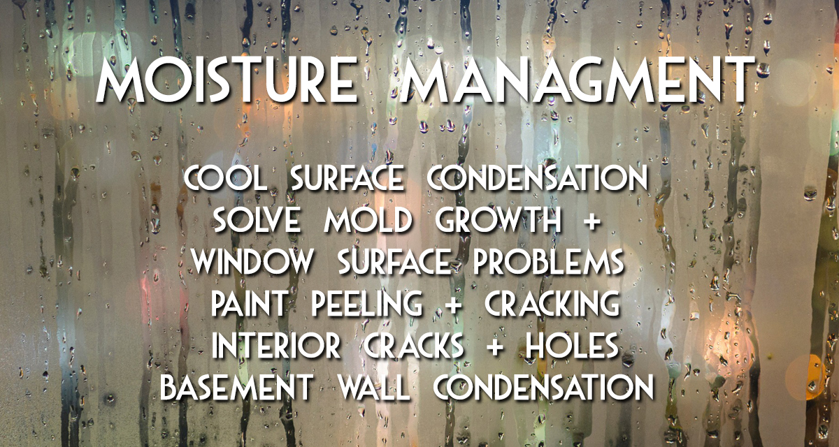 Moisture Management with MadCity Environmental