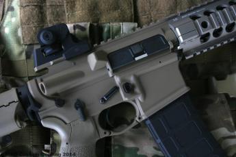 AR 15 in Magpul FDE