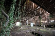 Nature reclaiming a workshop