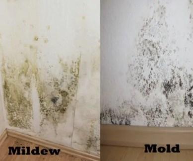 Do I need to prime drywall before tiling, 8 amazing secrets revealed