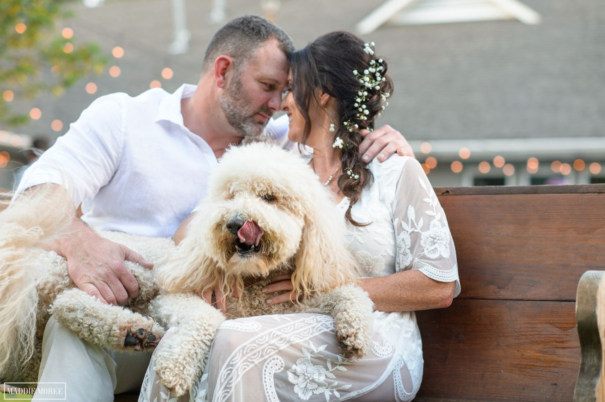 bride groom golden labradoodle wedding photography