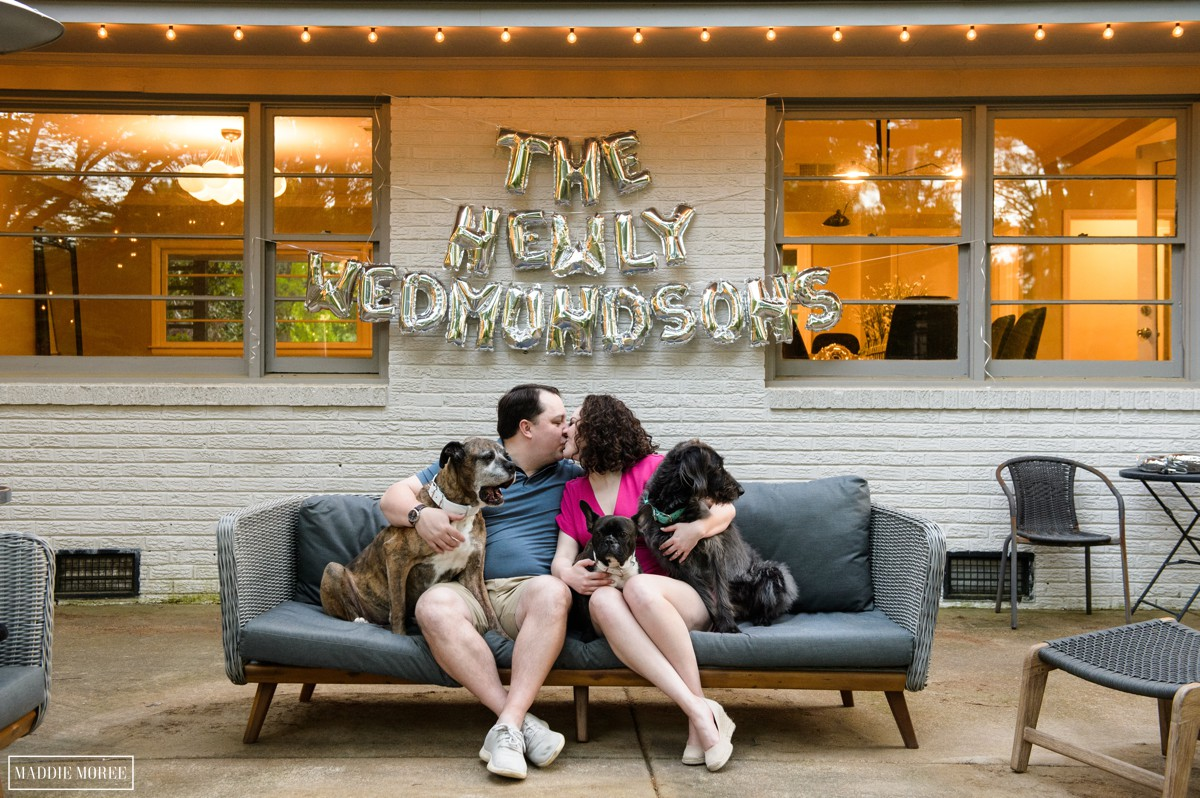 memphis engagement with dogs