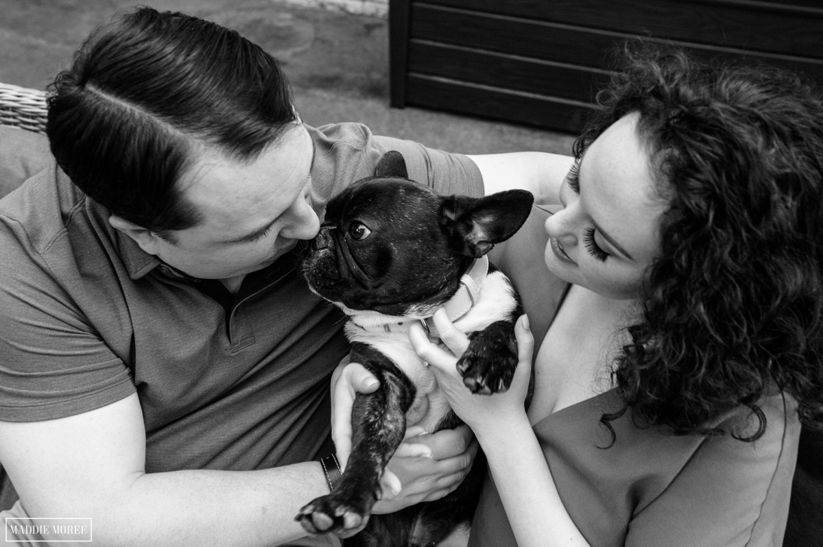 memphis engagement with dogs maddie moree