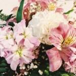 Flowers & Fullness