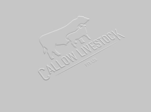 Callow Livestock Logo