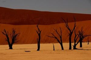 Deadvlei in Namibia My African Bucket List