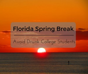 10 Things to do on a Florida Spring Break and avoid drunk college students