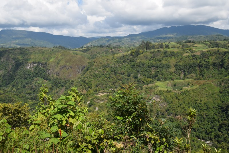 Solo Travel Colombia