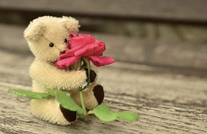 Pantun Romantis Untuk Cowok